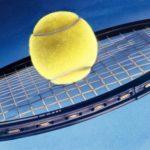 Szárnyal a legjobb magyar férfi teniszező