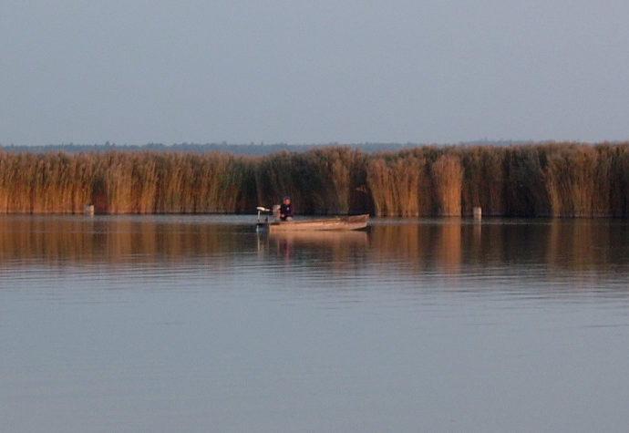 Javult a Velencei-tó térségének vízminősége 77b258e886