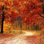 Itt az ősz, itt van újra